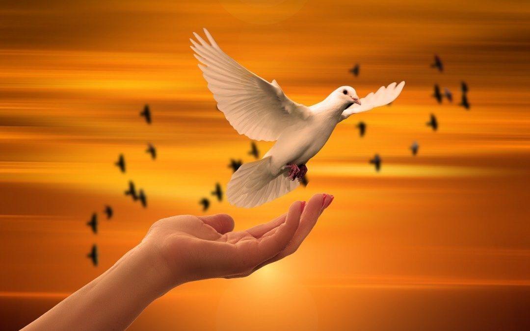 Many-winged Hope