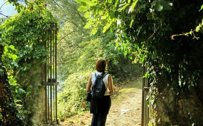 A Journey to Healthy Relational Boundaries