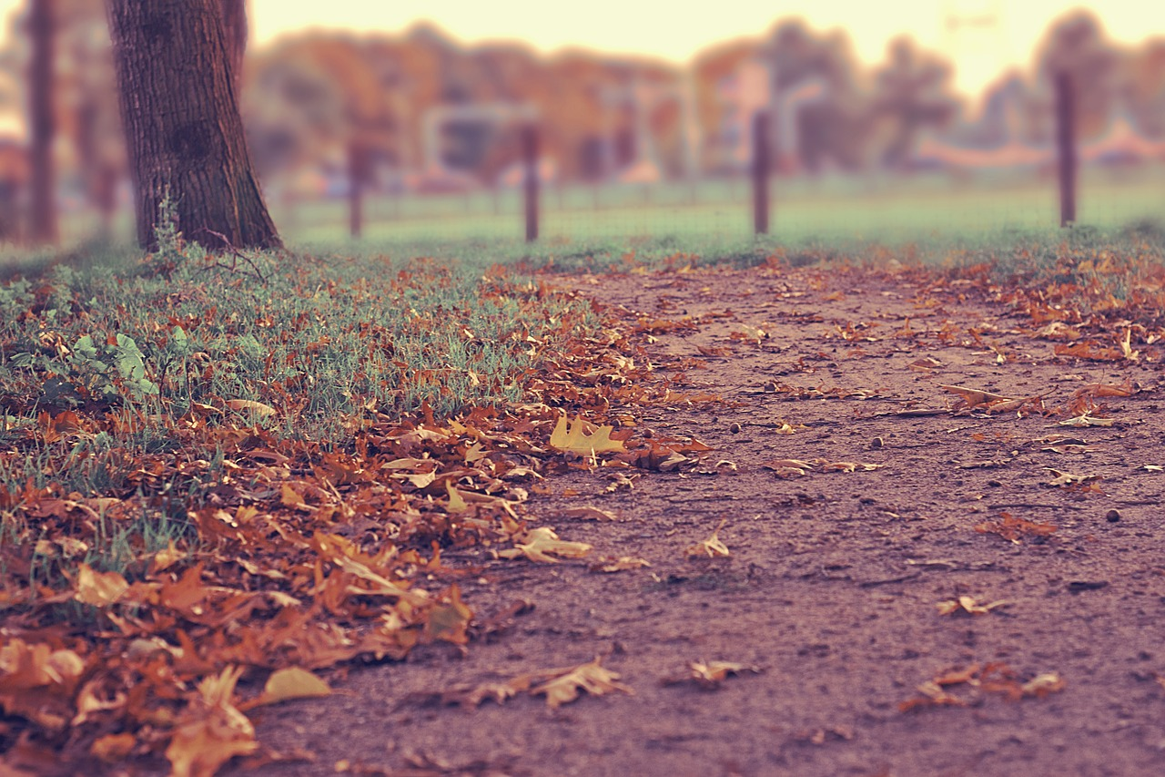 The Worn Dirt Path That Exposed My Prejudice